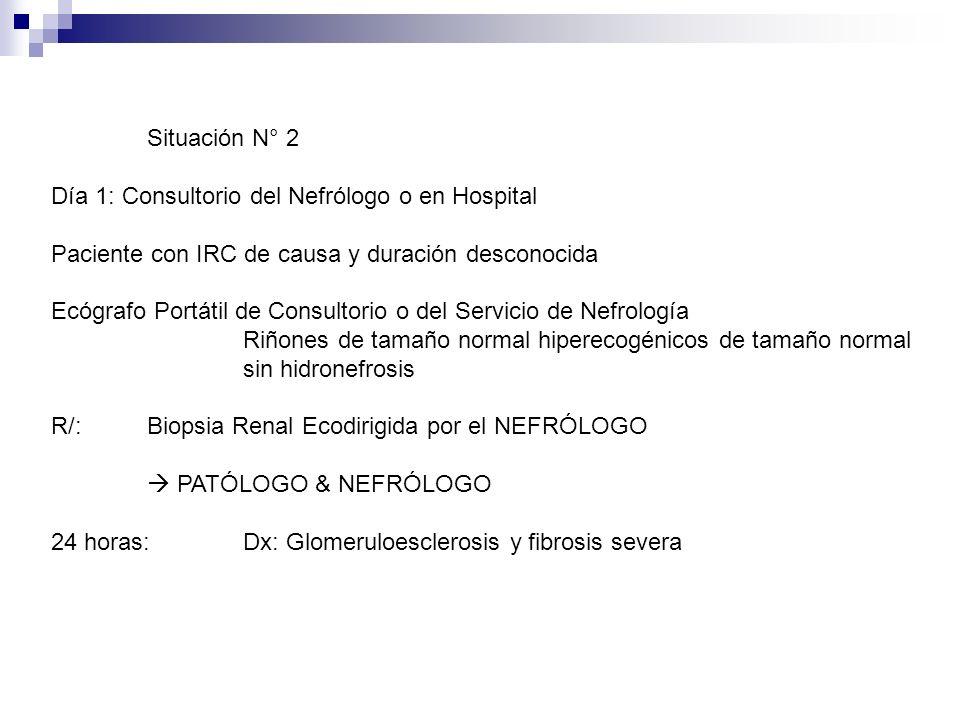 Situación N° 2 Día 1: Consultorio del Nefrólogo o en Hospital Paciente con IRC de causa y duración desconocida Ecógrafo Portátil de Consultorio o del