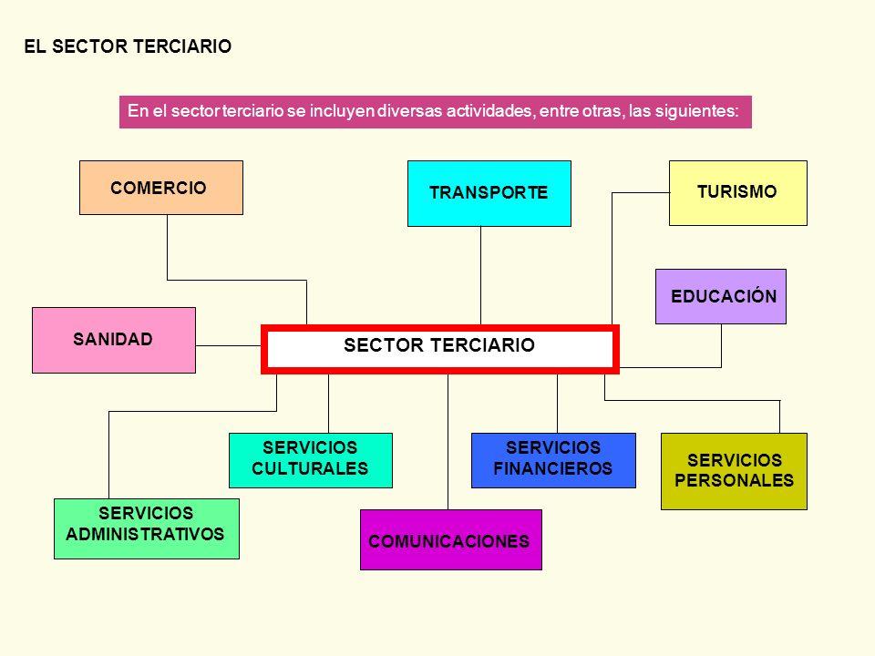 EL SECTOR TERCIARIO En el sector terciario se incluyen diversas actividades, entre otras, las siguientes: SERVICIOS ADMINISTRATIVOS COMUNICACIONES SER