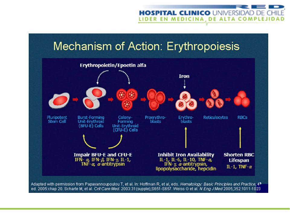 FG-2216 Inhibidor de la propil hidroxilasa Molécula pequeña, no es un péptido Activa por vía oral Incrementa la EPO endógena en 3-5 veces Disminuye la hepcidina mejora la absorción Fe oral y su metabolismo celular Modula mediadores inflamatorios Sin efectos adversos serios