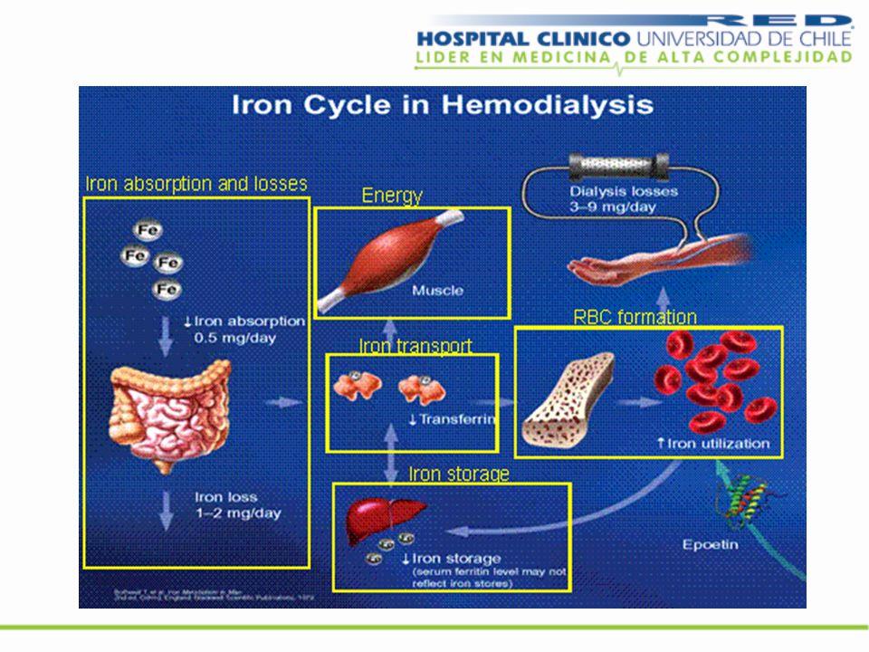 Balance de fierro en hemodiálisis Ingresos disminuidos Pobre ingesta Disminución de la absorción, interacción con fármacos (quelantes antiacidos) Inflamación aumento hepcidina Pérdidas aumentadas Hemodiálisis 6-7 mg/sesión Exámenes: 1 mg.