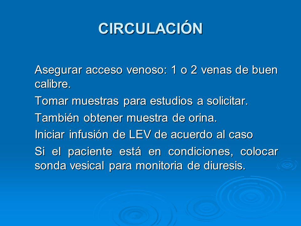 CIRCULACIÓN Asegurar acceso venoso: 1 o 2 venas de buen calibre. Tomar muestras para estudios a solicitar. También obtener muestra de orina. Iniciar i