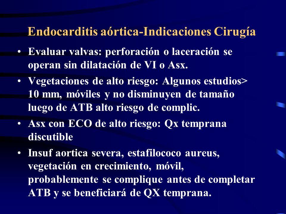 Endocarditis aórtica-Indicaciones Cirugía Evaluar valvas: perforación o laceración se operan sin dilatación de VI o Asx. Vegetaciones de alto riesgo: