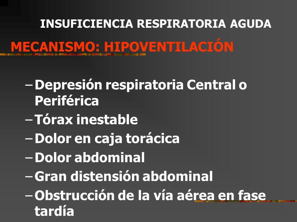 INSUFICIENCIA RESPIRATORIA AGUDA CONCEPTOS FISIOPATOLOGICOS VENTILACION –Movimientos torácicos que aseguran el recambio aéreo.