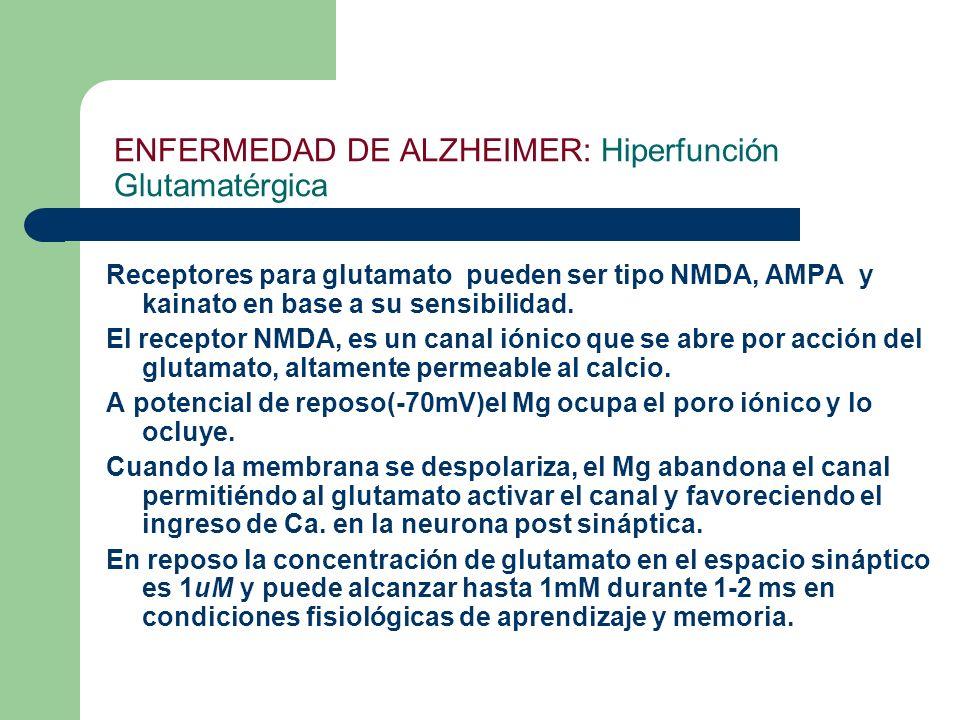 ENFERMEDAD DE ALZHEIMER: Hiperfunción Glutamatérgica Receptores para glutamato pueden ser tipo NMDA, AMPA y kainato en base a su sensibilidad. El rece