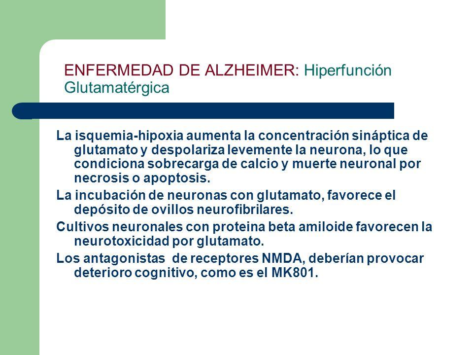 ENFERMEDAD DE ALZHEIMER: Hiperfunción Glutamatérgica La isquemia-hipoxia aumenta la concentración sináptica de glutamato y despolariza levemente la ne