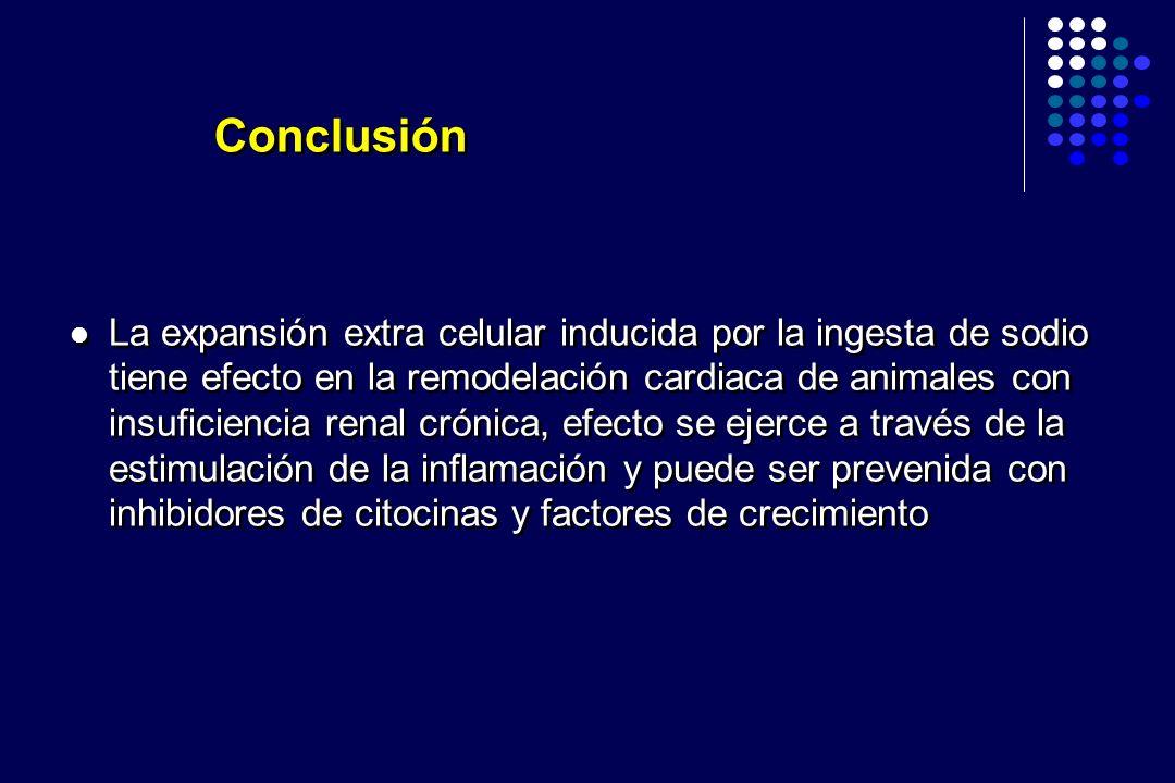 La expansión extra celular inducida por la ingesta de sodio tiene efecto en la remodelación cardiaca de animales con insuficiencia renal crónica, efec