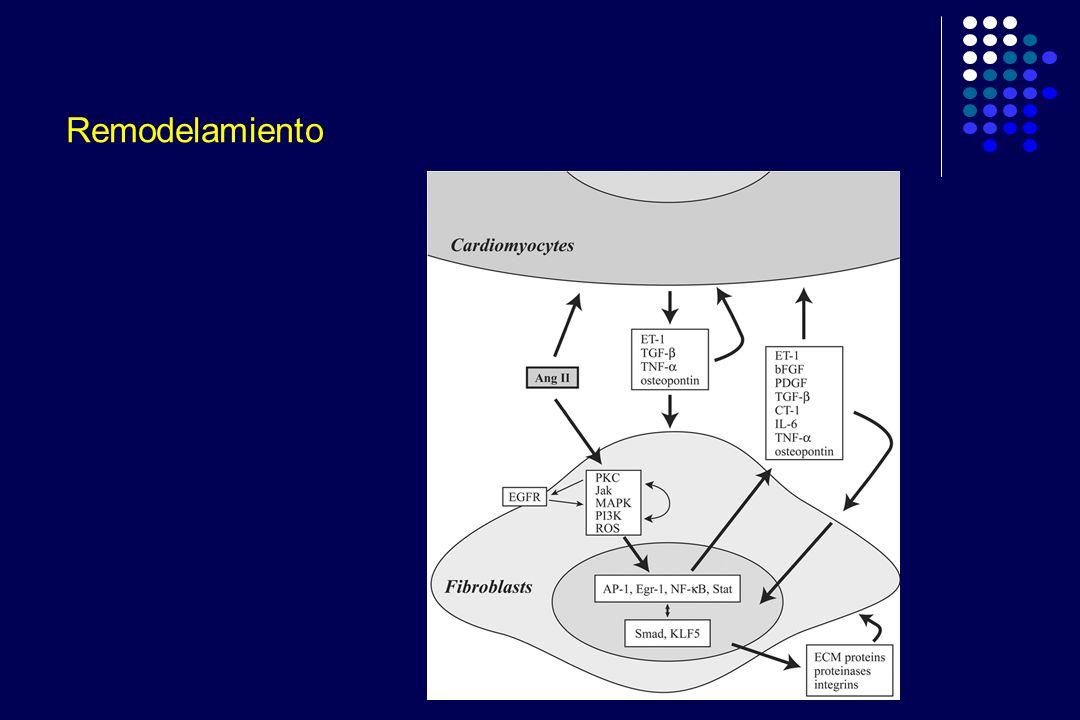 ADEMEX: Diseño Ensayo clínico controlado (RCT) Basal: Pacientes con DCr peritoneal < 60L/week/1.73m 2 Desenlaces: Primario: Mortalidad Secundario: Falla de la técnica, Hospitalización, QOL, Labs, etc.