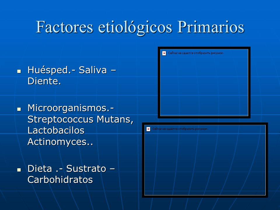 Factores etiológicos Primarios Huésped.- Saliva – Diente. Huésped.- Saliva – Diente. Microorganismos.- Streptococcus Mutans, Lactobacilos Actinomyces.