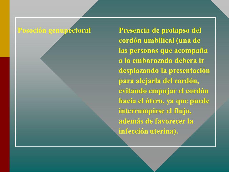 Posoción genupectoral Presencia de prolapso del cordón umbilical (una de las personas que acompaña a la embarazada debera ir desplazando la presentaci