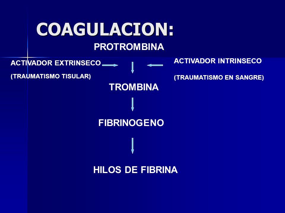 HEPARINA SODICA-HEPARINA NO FRACCIONADA Mecanismo de acción : Cofactor inhibidor plasmático de la trombina, inhibiendo los factores de la coagulación: FXII(f.antihemofílico D), FXI (f.
