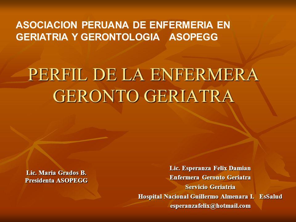 PERFIL DE LA ENFERMERA GERONTO GERIATRA ASOCIACION PERUANA DE ENFERMERIA EN GERIATRIA Y GERONTOLOGIA ASOPEGG Lic. Esperanza Felix Damian Enfermera Ger
