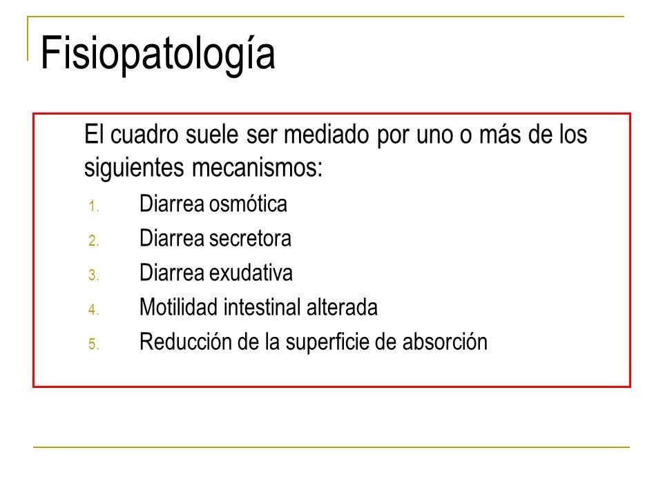 Fisiopatología El cuadro suele ser mediado por uno o más de los siguientes mecanismos: 1. Diarrea osmótica 2. Diarrea secretora 3. Diarrea exudativa 4