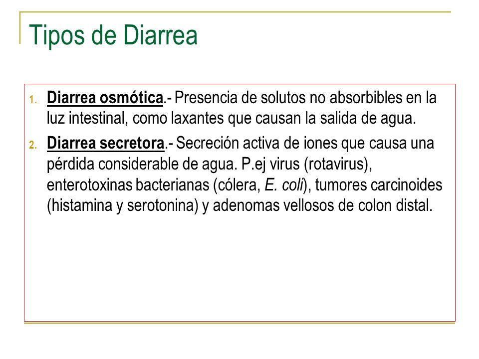 Tipos de Diarrea 1. Diarrea osmótica.- Presencia de solutos no absorbibles en la luz intestinal, como laxantes que causan la salida de agua. 2. Diarre