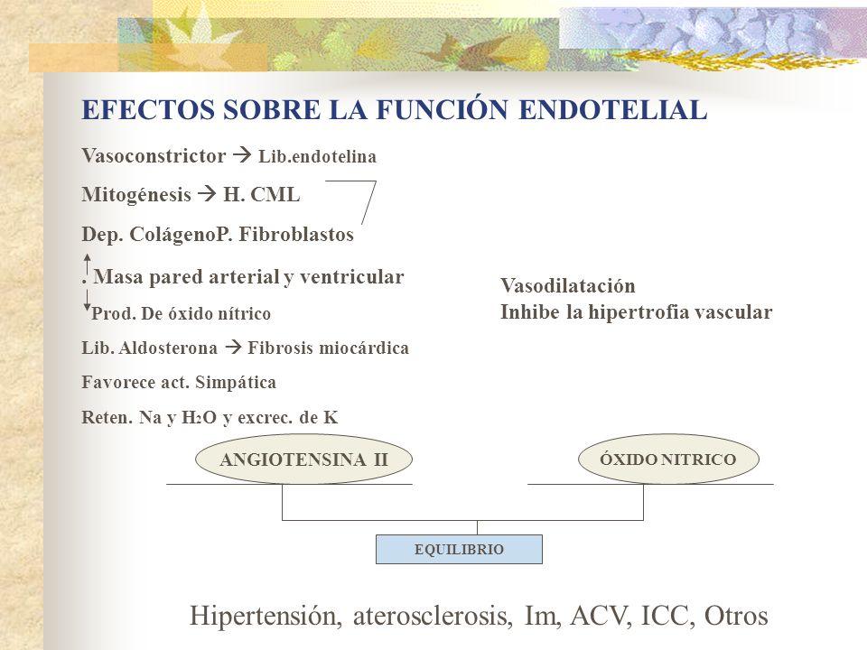 ANGIOTENSINA II ÓXIDO NITRICO EQUILIBRIO Vasoconstrictor Lib.endotelina Mitogénesis H. CML Dep. ColágenoP. Fibroblastos. Masa pared arterial y ventric