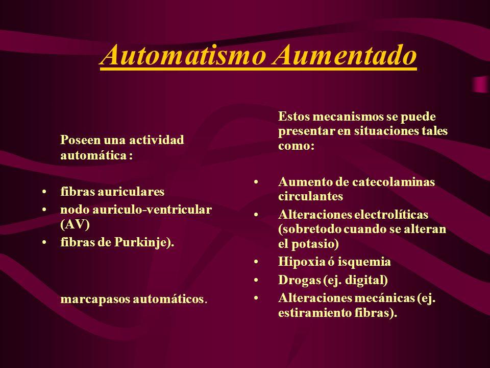 Automatismo Aumentado Poseen una actividad automática : fibras auriculares nodo auriculo-ventricular (AV) fibras de Purkinje). marcapasos automáticos.