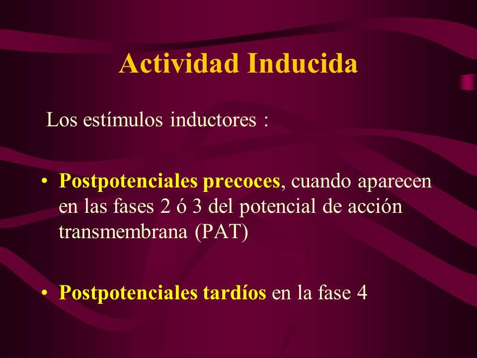 Actividad Inducida Los estímulos inductores : Postpotenciales precoces, cuando aparecen en las fases 2 ó 3 del potencial de acción transmembrana (PAT)