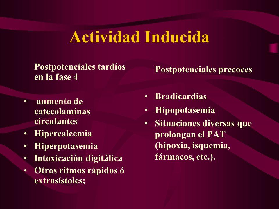 Actividad Inducida Postpotenciales tardíos en la fase 4 aumento de catecolaminas circulantes Hipercalcemia Hiperpotasemia Intoxicación digitálica Otro