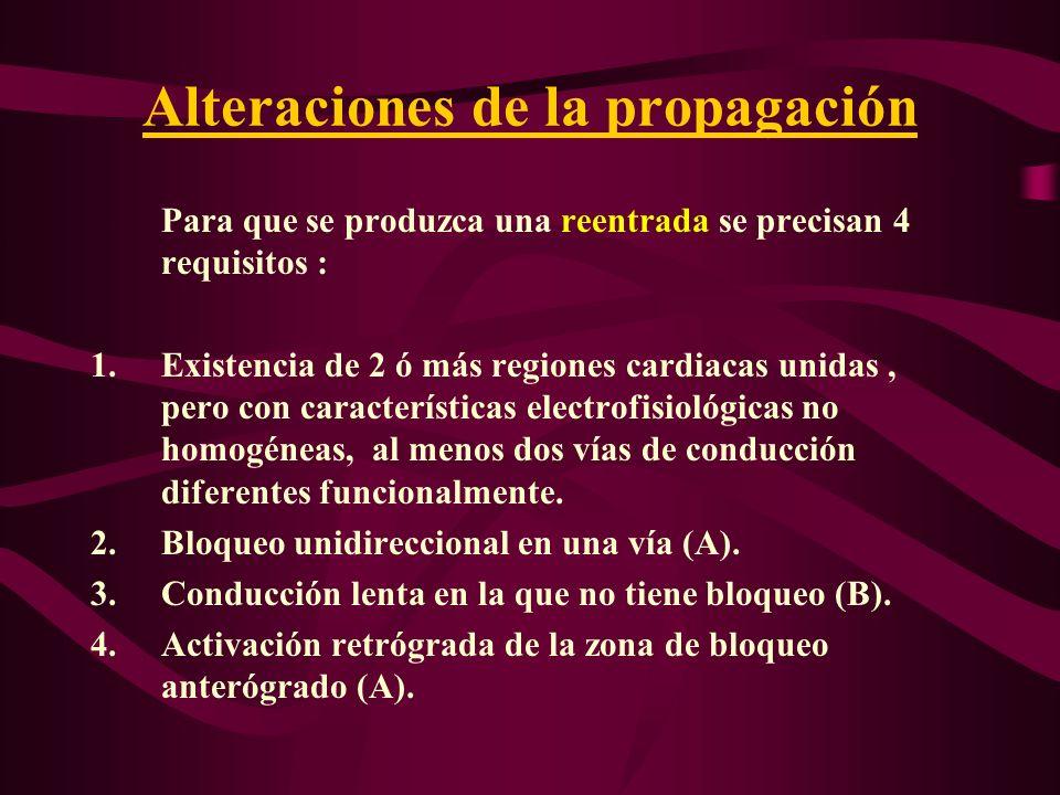 Alteraciones de la propagación Para que se produzca una reentrada se precisan 4 requisitos : 1.Existencia de 2 ó más regiones cardiacas unidas, pero c