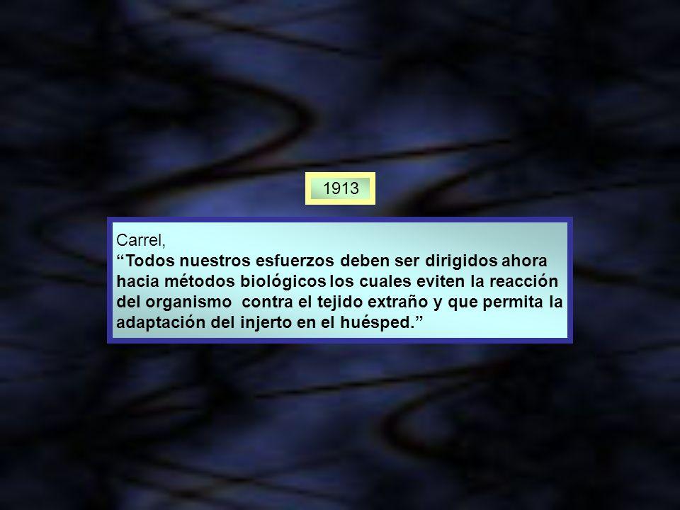 1913 Carrel, Todos nuestros esfuerzos deben ser dirigidos ahora hacia métodos biológicos los cuales eviten la reacción del organismo contra el tejido