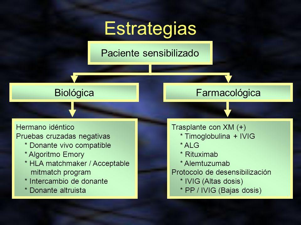 Estrategias Paciente sensibilizado BiológicaFarmacológica Hermano idéntico Pruebas cruzadas negativas * Donante vivo compatible * Algoritmo Emory * HL