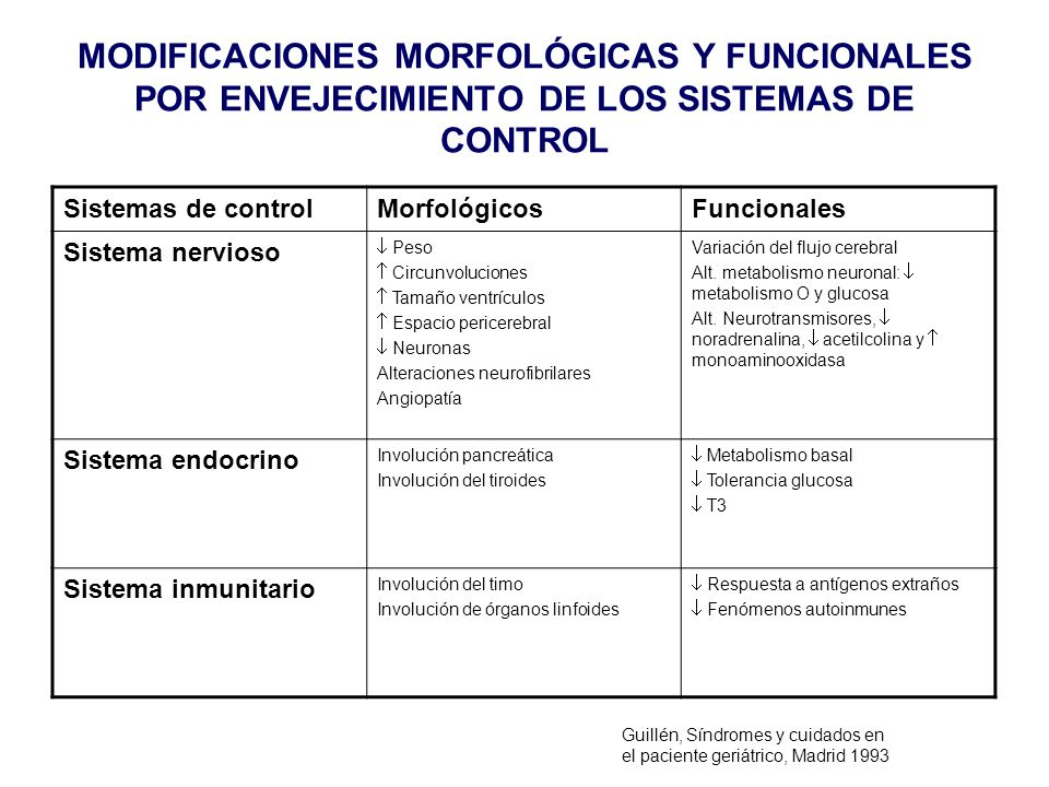 MODIFICACIONES MORFOLÓGICAS Y FUNCIONALES POR ENVEJECIMIENTO DE LOS SISTEMAS DE CONTROL Sistemas de controlMorfológicosFuncionales Sistema nervioso Pe