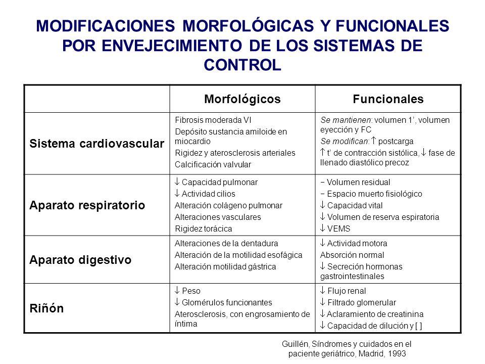 MODIFICACIONES MORFOLÓGICAS Y FUNCIONALES POR ENVEJECIMIENTO DE LOS SISTEMAS DE CONTROL MorfológicosFuncionales Sistema cardiovascular Fibrosis modera