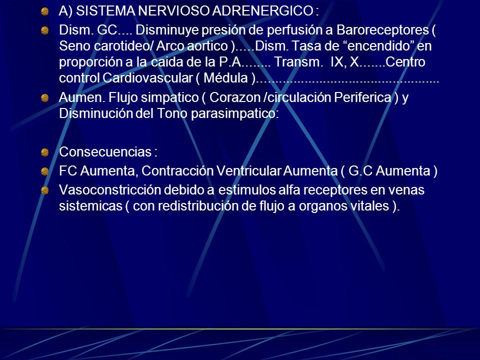 A) SISTEMA NERVIOSO ADRENERGICO : Dism. GC.... Disminuye presión de perfusión a Baroreceptores ( Seno carotideo/ Arco aortico ).....Dism. Tasa de ence