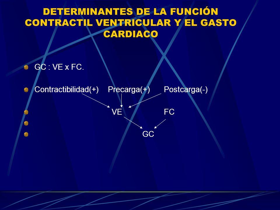 DETERMINANTES DE LA FUNCIÓN CONTRACTIL VENTRICULAR Y EL GASTO CARDIACO GC : VE x FC. Contractibilidad(+)Precarga(+)Postcarga(-) VEFC GC