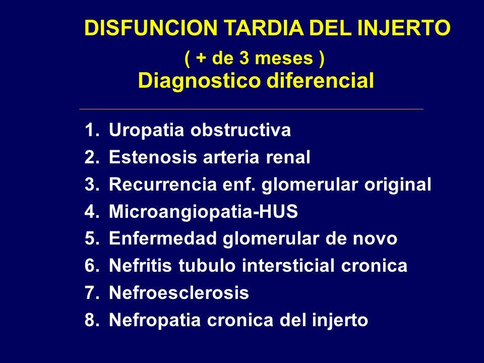 DISFUNCION TARDIA DEL INJERTO ( + de 3 meses ) Diagnostico diferencial 1.Uropatia obstructiva 2.Estenosis arteria renal 3.Recurrencia enf. glomerular