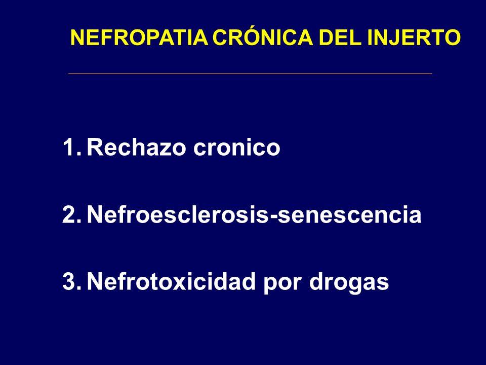 NEFROPATIA CRÓNICA DEL INJERTO 1.Rechazo cronico 2.Nefroesclerosis-senescencia 3.Nefrotoxicidad por drogas