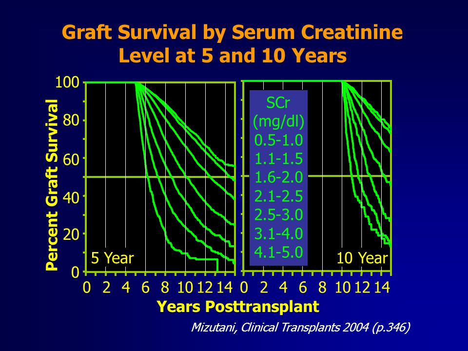 Mizutani, Clinical Transplants 2004 (p.346) Graft Survival by Serum Creatinine Level at 5 and 10 Years Years Posttransplant Percent Graft Survival 20