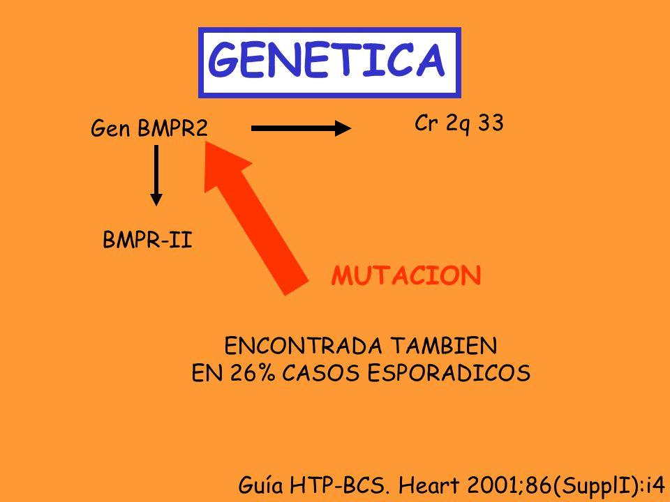 GENETICA Gen BMPR2 Cr 2q 33 BMPR-II MUTACION ENCONTRADA TAMBIEN EN 26% CASOS ESPORADICOS Guía HTP-BCS. Heart 2001;86(SupplI):i4