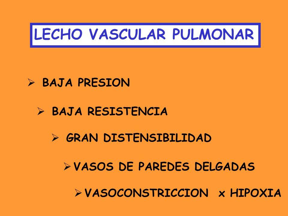 TERAPIA CON VASODILATADORES RECOMENDACIONES IC > 2.1 L/min/m2 SAT O2 VENOSA MIXTA > 63% PAD < 10 mmHg RESPONDEDORES A PRUEBAS VASODILATADORAS AGUDAS