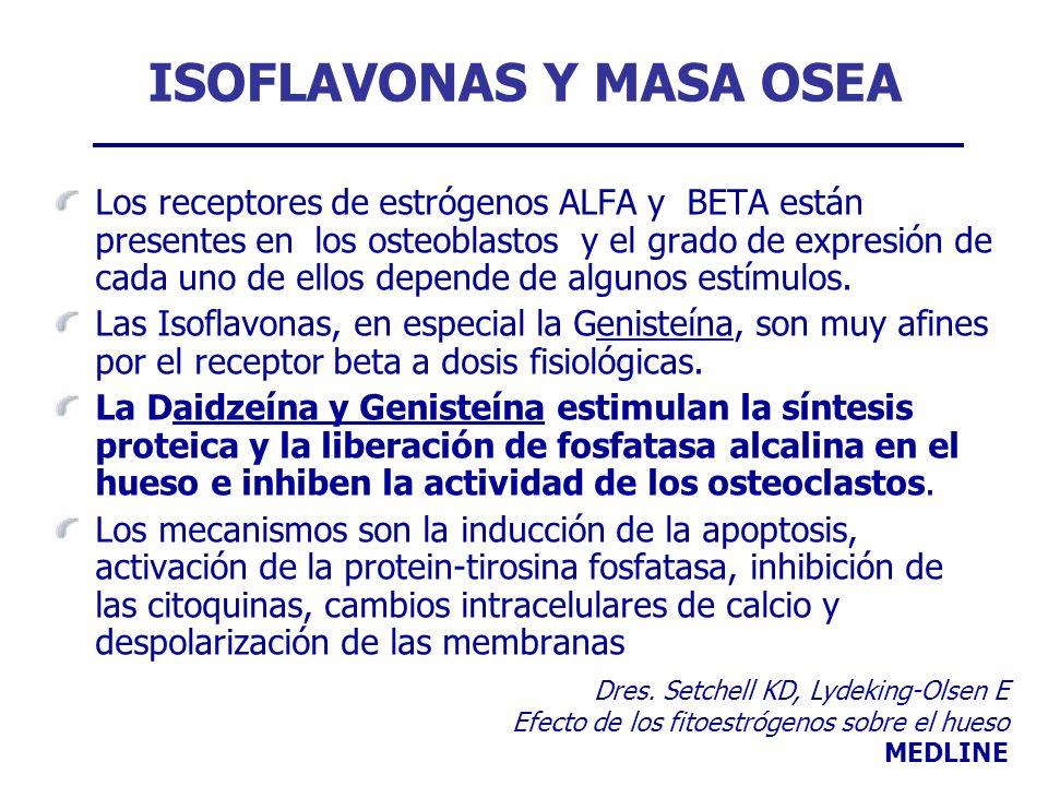 ISOFLAVONAS Y MASA OSEA Los receptores de estrógenos ALFA y BETA están presentes en los osteoblastos y el grado de expresión de cada uno de ellos depe