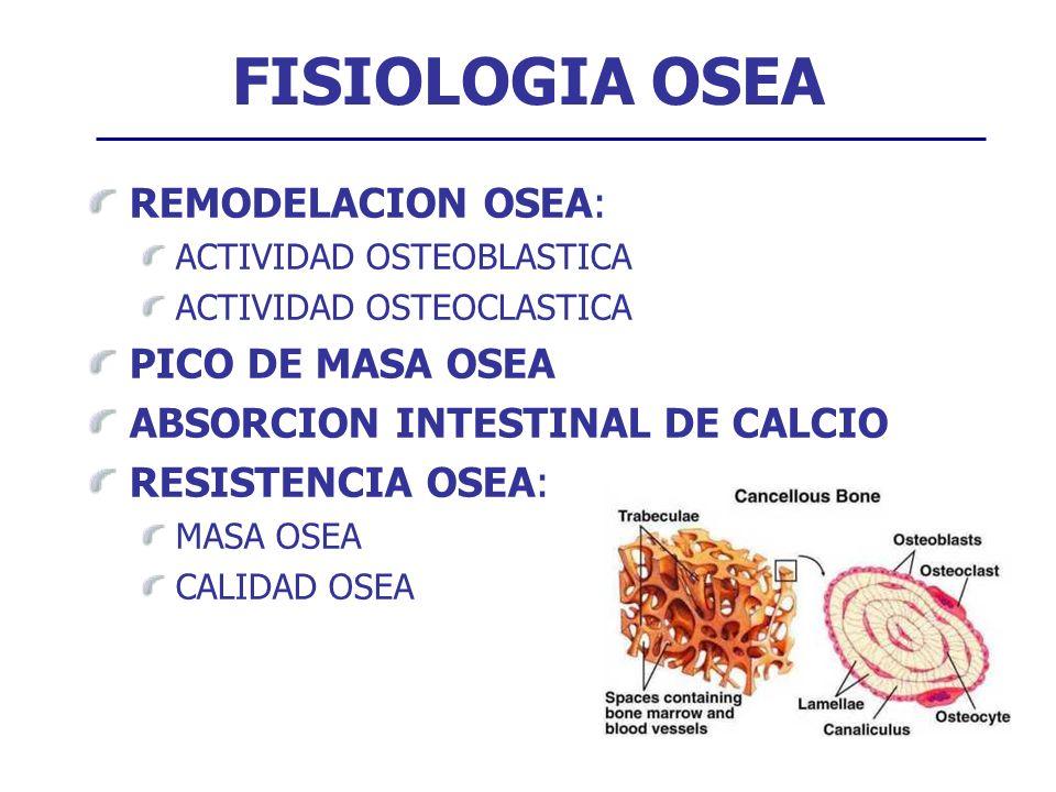 FISIOLOGIA OSEA REMODELACION OSEA: ACTIVIDAD OSTEOBLASTICA ACTIVIDAD OSTEOCLASTICA PICO DE MASA OSEA ABSORCION INTESTINAL DE CALCIO RESISTENCIA OSEA: