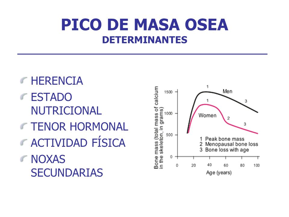 HERENCIA ESTADO NUTRICIONAL TENOR HORMONAL ACTIVIDAD FÍSICA NOXAS SECUNDARIAS PICO DE MASA OSEA DETERMINANTES