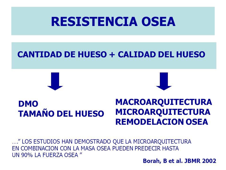 CANTIDAD DE HUESO + CALIDAD DEL HUESO RESISTENCIA OSEA DMO TAMAÑO DEL HUESO MACROARQUITECTURA MICROARQUITECTURA REMODELACION OSEA …. LOS ESTUDIOS HAN