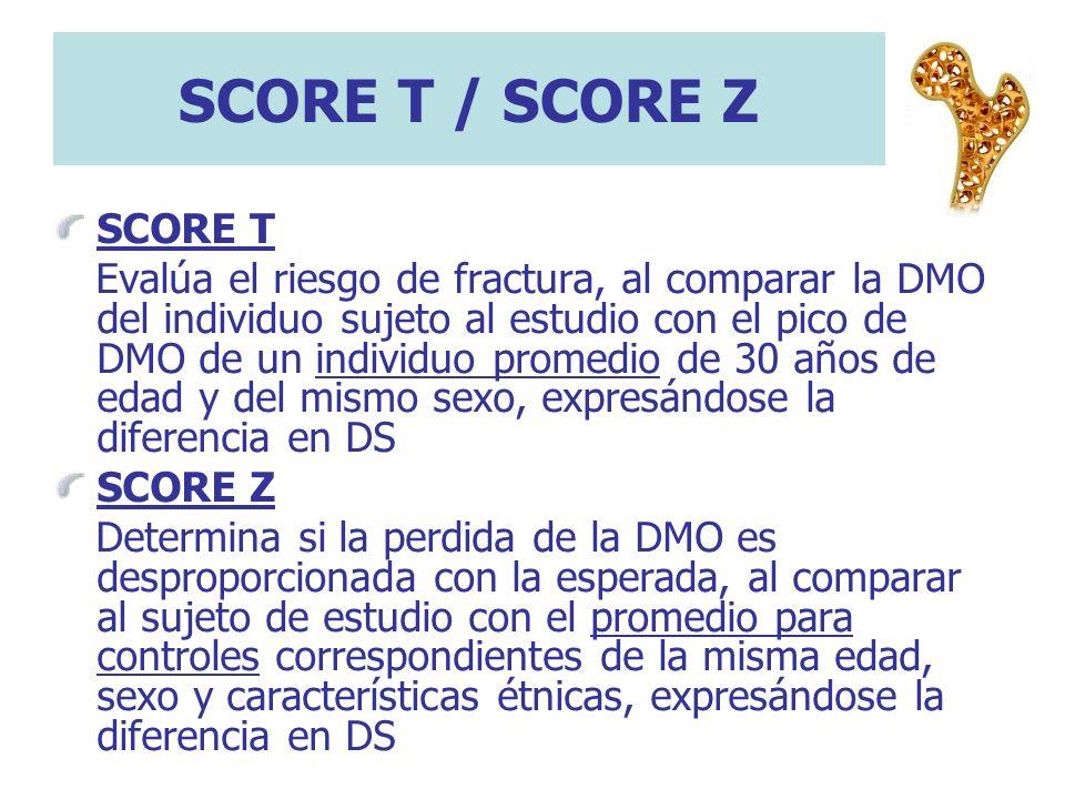 SCORE T / SCORE Z SCORE T Evalúa el riesgo de fractura, al comparar la DMO del individuo sujeto al estudio con el pico de DMO de un individuo promedio