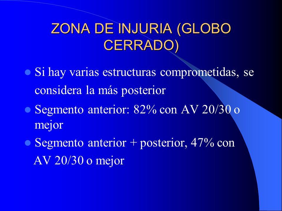 ZONA DE INJURIA (GLOBO CERRADO) Si hay varias estructuras comprometidas, se considera la más posterior Segmento anterior: 82% con AV 20/30 o mejor Seg