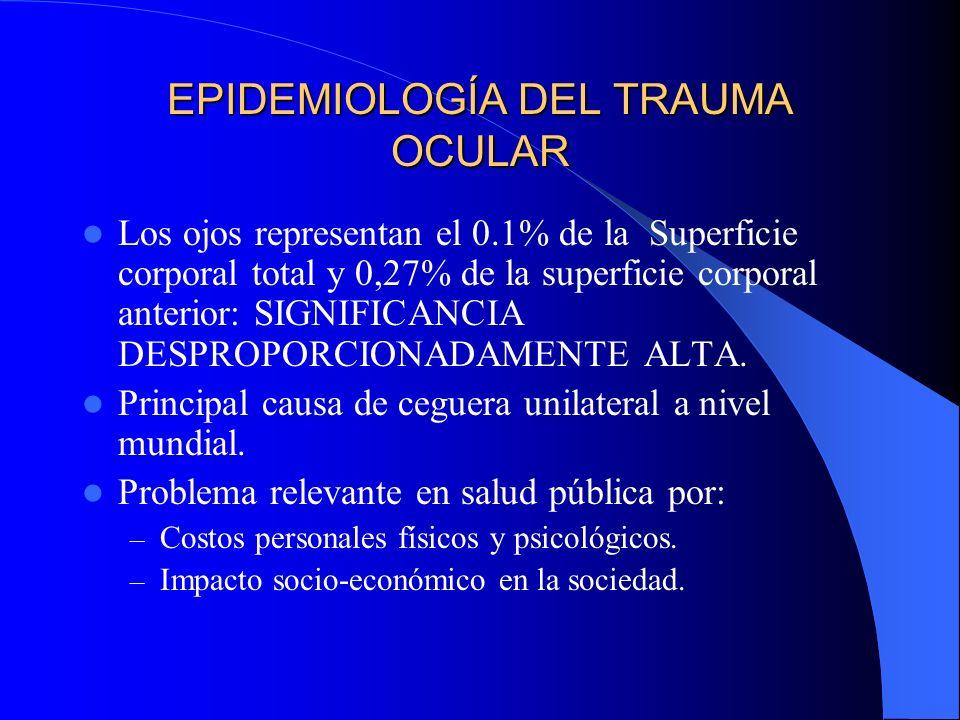 EPIDEMIOLOGÍA DEL TRAUMA OCULAR Los ojos representan el 0.1% de la Superficie corporal total y 0,27% de la superficie corporal anterior: SIGNIFICANCIA