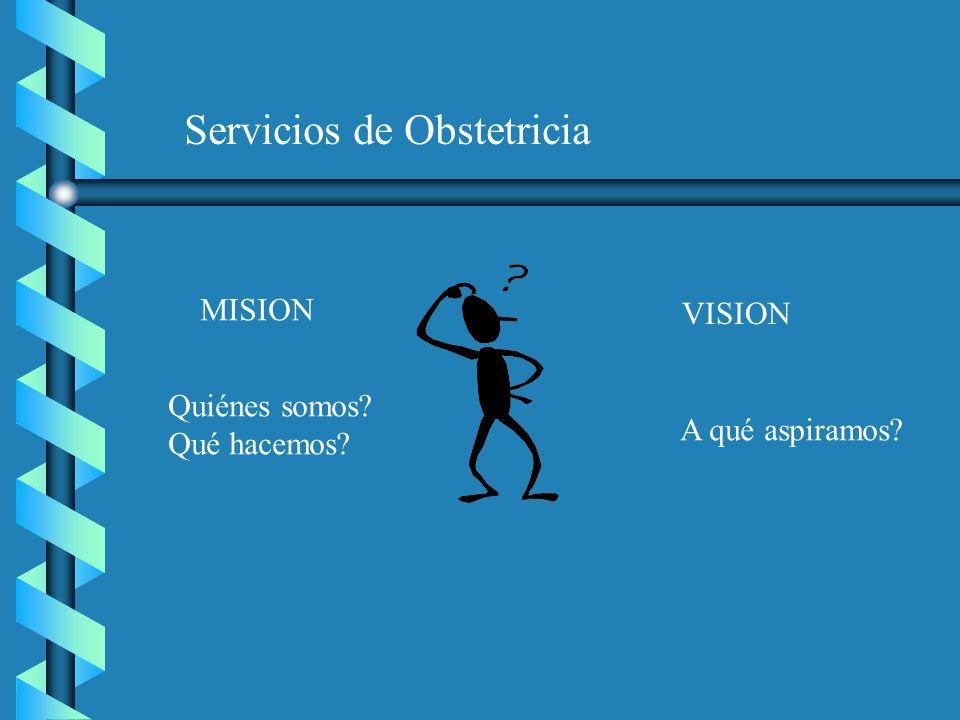 Servicios de Obstetricia MISION VISION Quiénes somos? Qué hacemos? A qué aspiramos?