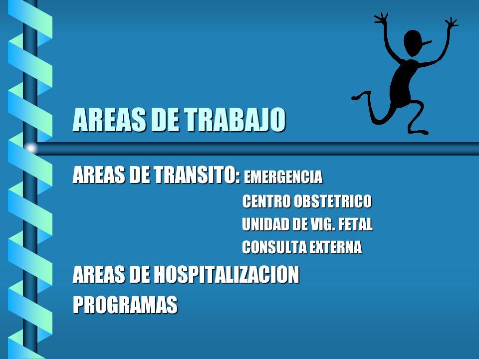 AREAS DE TRABAJO AREAS DE TRANSITO: EMERGENCIA CENTRO OBSTETRICO CENTRO OBSTETRICO UNIDAD DE VIG. FETAL UNIDAD DE VIG. FETAL CONSULTA EXTERNA CONSULTA