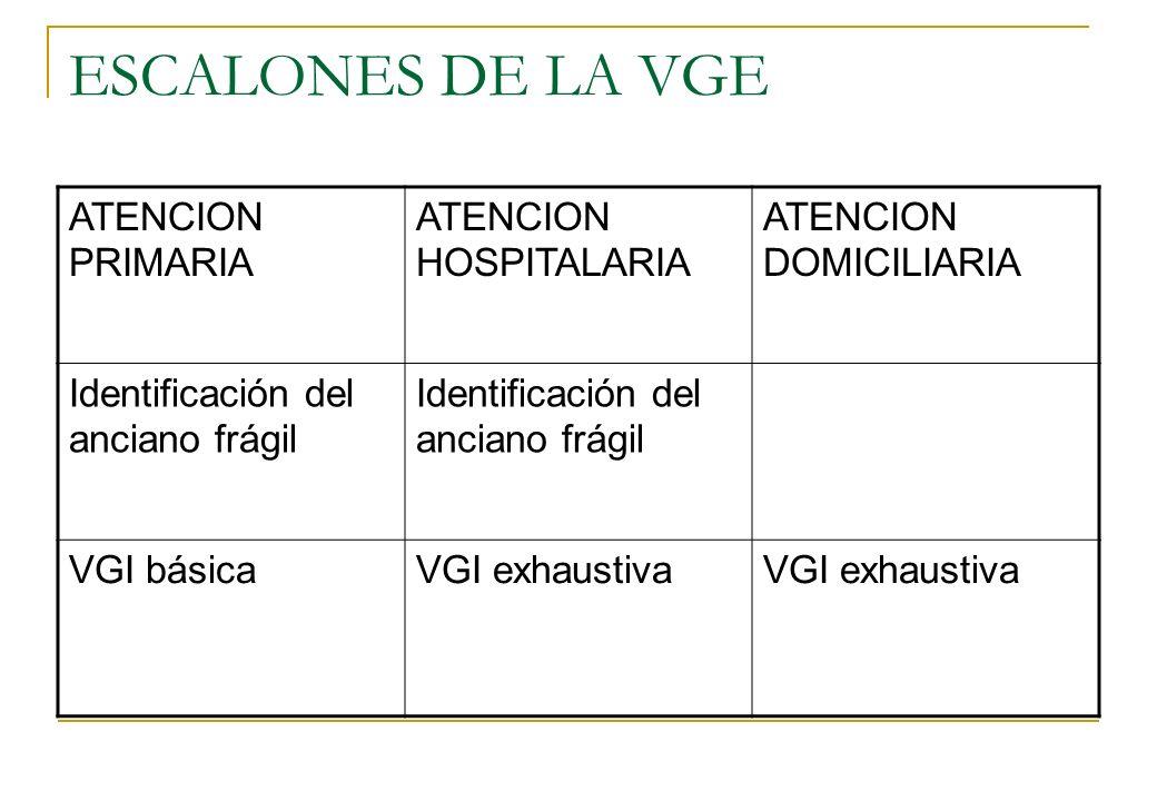 ESCALONES DE LA VGE ATENCION PRIMARIA ATENCION HOSPITALARIA ATENCION DOMICILIARIA Identificación del anciano frágil VGI básicaVGI exhaustiva