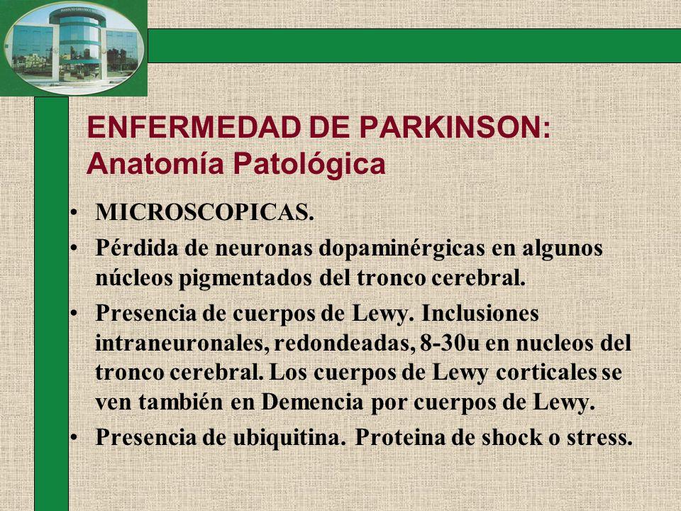 ENFERMEDAD DE PARKINSON: Anatomía Patológica MICROSCOPICAS. Pérdida de neuronas dopaminérgicas en algunos núcleos pigmentados del tronco cerebral. Pre