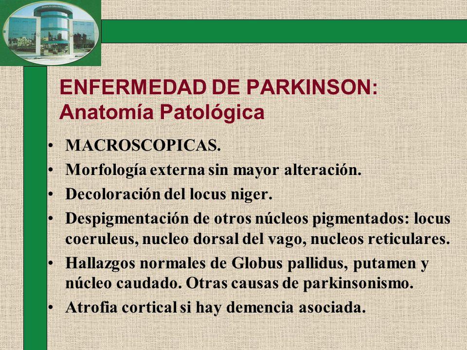ENFERMEDAD DE PARKINSON: Anatomía Patológica MACROSCOPICAS. Morfología externa sin mayor alteración. Decoloración del locus niger. Despigmentación de