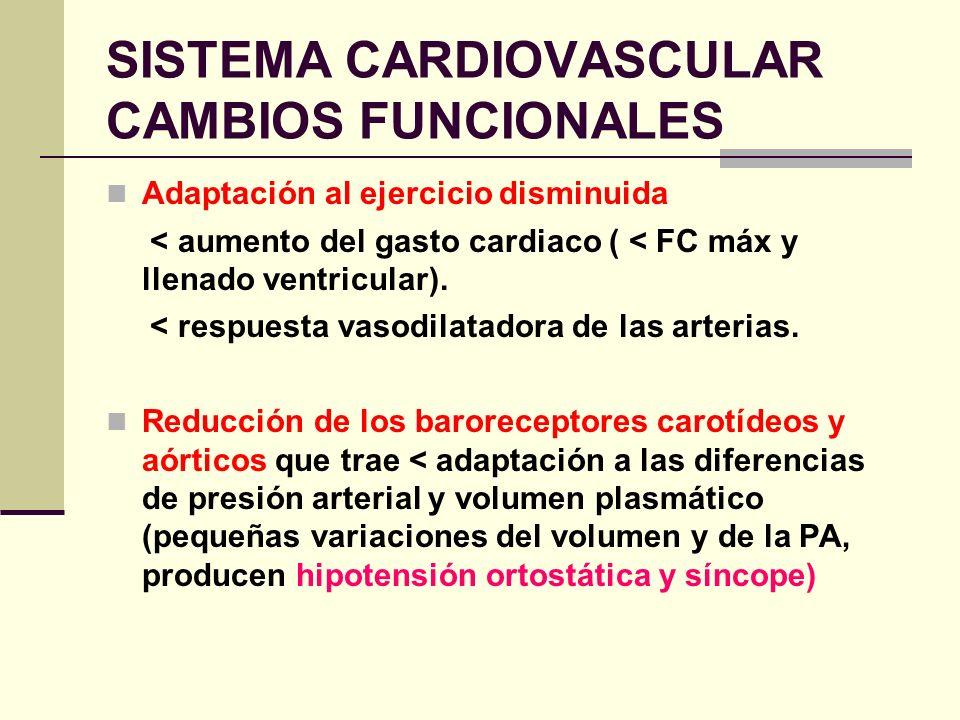 SISTEMA CARDIOVASCULAR CAMBIOS FUNCIONALES Adaptación al ejercicio disminuida < aumento del gasto cardiaco ( < FC máx y llenado ventricular). < respue