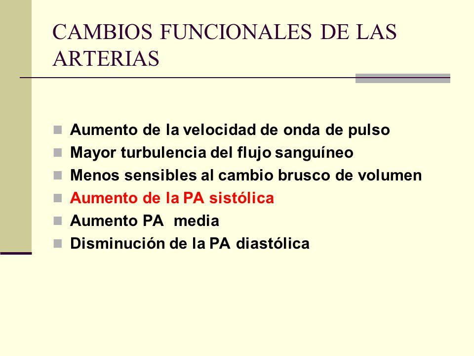 CAMBIOS FUNCIONALES DE LAS ARTERIAS Aumento de la velocidad de onda de pulso Mayor turbulencia del flujo sanguíneo Menos sensibles al cambio brusco de
