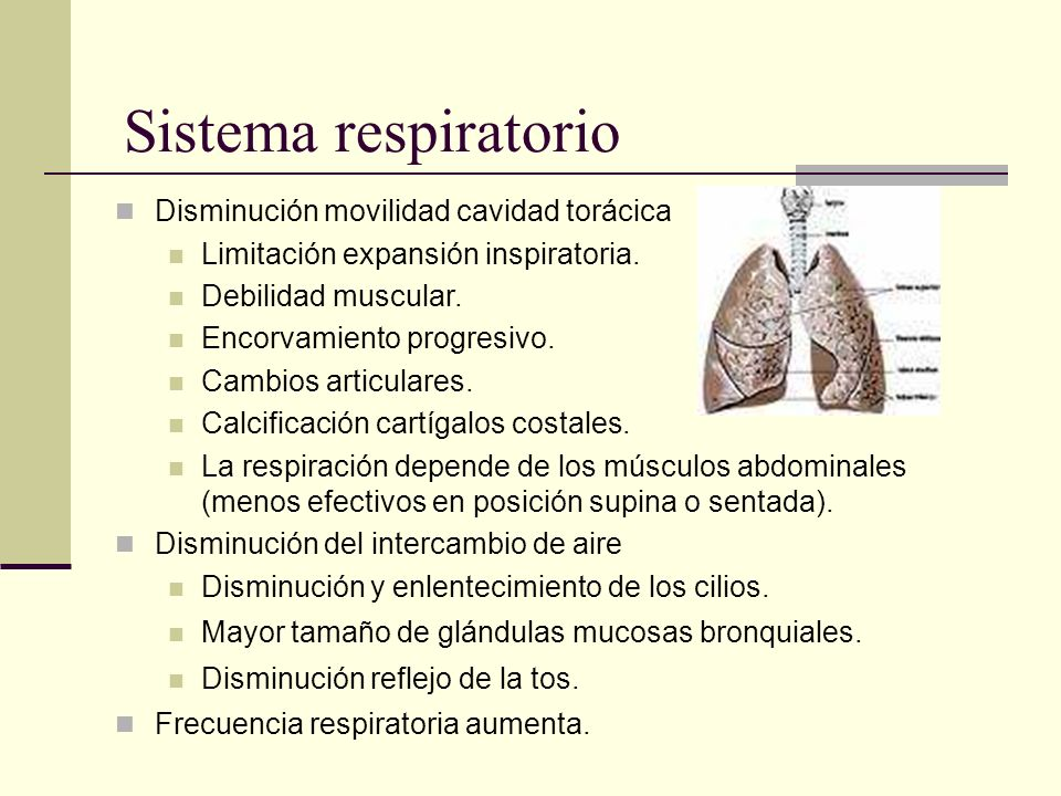 Sistema respiratorio Disminución movilidad cavidad torácica Limitación expansión inspiratoria. Debilidad muscular. Encorvamiento progresivo. Cambios a