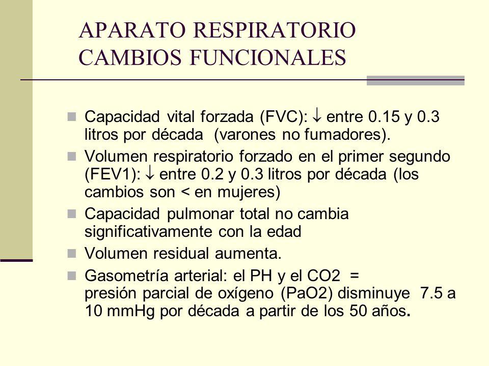 APARATO RESPIRATORIO CAMBIOS FUNCIONALES Capacidad vital forzada (FVC): entre 0.15 y 0.3 litros por década (varones no fumadores). Volumen respiratori