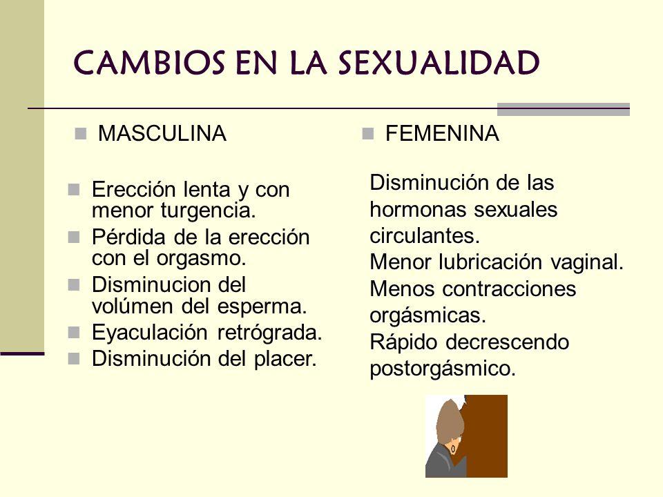 CAMBIOS EN LA SEXUALIDAD MASCULINA FEMENINA Erección lenta y con menor turgencia. Pérdida de la erección con el orgasmo. Disminucion del volúmen del e
